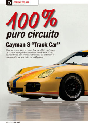 Cayman S Track Car
